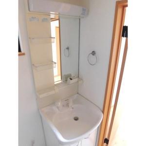 リバーロードes 部屋写真6 独立洗面台