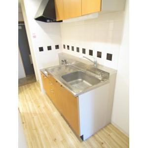 グレイスS 部屋写真3 キッチン