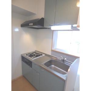 ハイネスルピナ 部屋写真2 キッチン