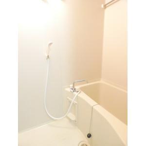 グリーンヴィレ 部屋写真4 洗面所