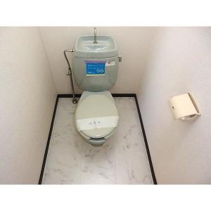 パークビレッジ1番館 部屋写真4 トイレ