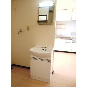 パークビレッジ1番館 部屋写真6 洗面所
