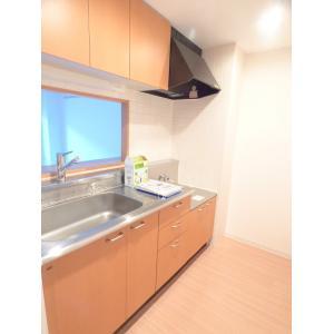 MaisondeMikuri 部屋写真2 居室・リビング