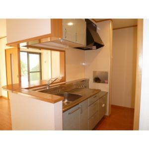 プレジール 部屋写真2 キッチン
