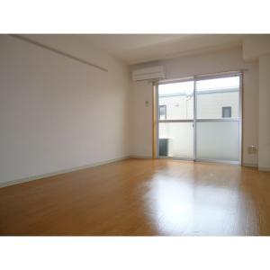 ブランシュール 部屋写真1 居室・リビング