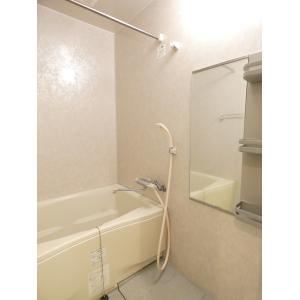 カーサソレアード 部屋写真5 洗面所