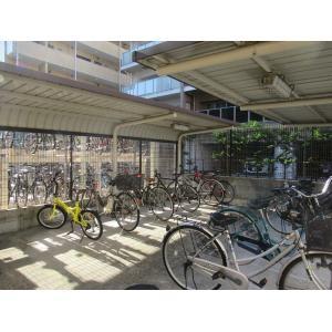 サン フォレスト 物件写真5 駐車場