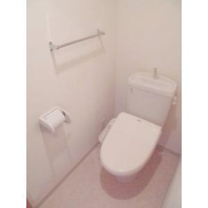 サン フォレスト 部屋写真3 トイレ