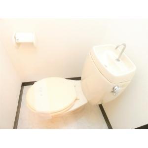 ライトハイツ 部屋写真6 その他部屋・スペース