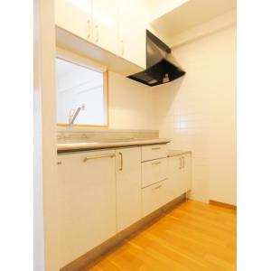 LUNAGRANDE新横浜 部屋写真2 キッチン