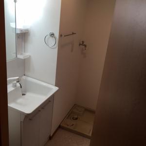 プラムガーデンD 部屋写真4 洗面所