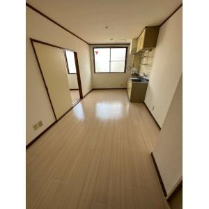 ワイズフラット 部屋写真1 居室・リビング