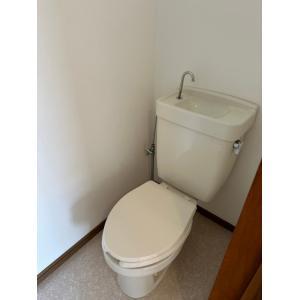 ワイズフラット 部屋写真4 トイレ