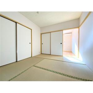 シャトルM 部屋写真6 その他部屋・スペース