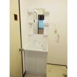 ペンギンハウス 部屋写真5 新設・洗髪洗面台