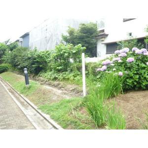 サンガーデン斉藤B 物件写真5 バルコニー側歩道