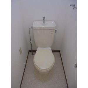 セジュール イーグル 部屋写真4 トイレ