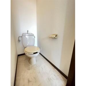 プレゼンスアミティエ 部屋写真5 洗面所