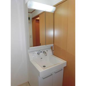 ウェリナ 部屋写真3 洗面所
