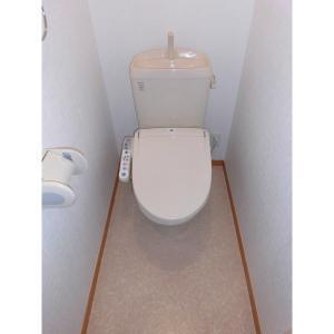 ウェリナ 部屋写真5 トイレ