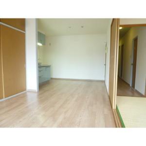 アーバンアイリス 部屋写真1 居室・リビング