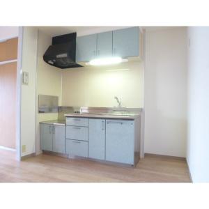 アーバンアイリス 部屋写真2 キッチン