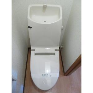 ダイユウハイツ 部屋写真5 トイレ