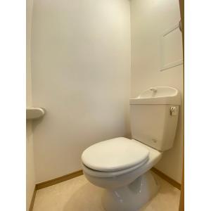 ライフピアカレッジⅡ 部屋写真4 トイレ