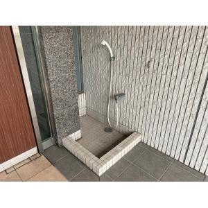 シャン・ド・ローズ 物件写真4 ペット用シャワー