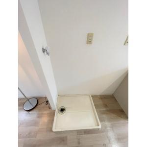 フローラ常盤平 部屋写真8 洗面所