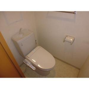 グランプラス白楽 部屋写真4 洗面所