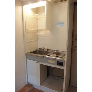 サウザンドリーフ 部屋写真3 キッチン