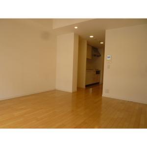 豊洲レジデンス 部屋写真1 居室・リビング