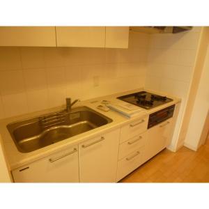 豊洲レジデンス 部屋写真2 キッチン