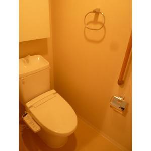 豊洲レジデンス 部屋写真4 トイレ