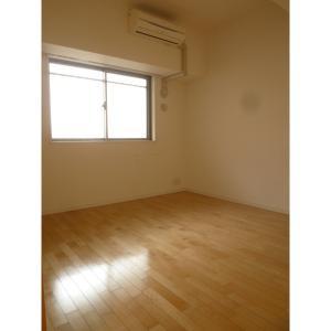 豊洲レジデンス 部屋写真6 その他部屋・スペース