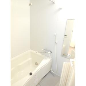 ストレチア レジーナ 部屋写真4 洗面所