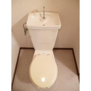 ハビテーションワコー 部屋写真5 トイレ