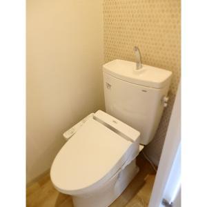 シャルム富浜 部屋写真5 トイレ