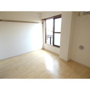 バウ東野 部屋写真1 居室・リビング