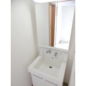 ベルティオン 部屋写真2 洗面所