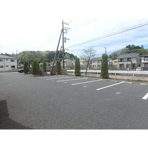 セレッソB 物件写真3 駐車場