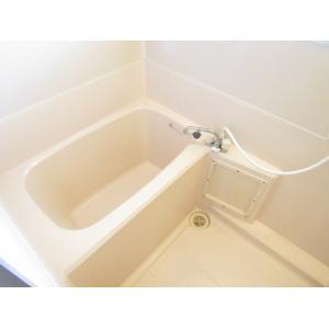 サウンド・メゾンA 部屋写真3 洗面所