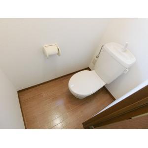 グリーンハイツB 部屋写真5 トイレ