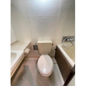 大塚台パークサイドハイツ 部屋写真4 収納