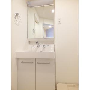 アミューズテスタ 部屋写真4 洗面所