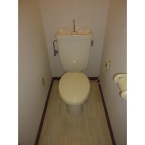 αNEXT高崎第4 部屋写真4 トイレ
