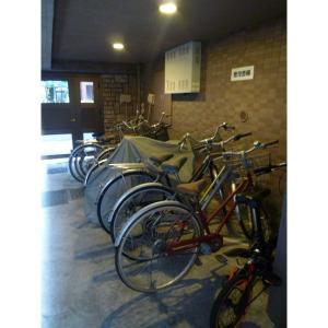 エルミタージュ南阿佐ヶ谷 物件写真4 屋根つき駐輪場