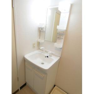 グレース六木 部屋写真5 洗面所