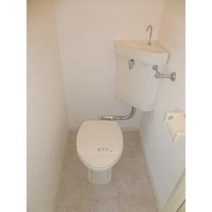 ラック泉 部屋写真8 トイレ